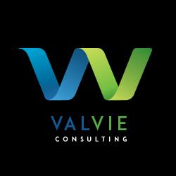 logo valvie branding